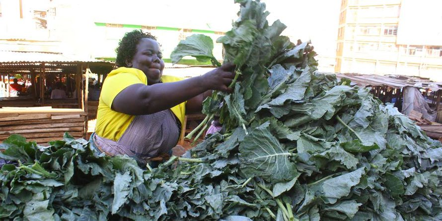 Smallholder farmers are Africa's lifeline in Covid-19 food crisis